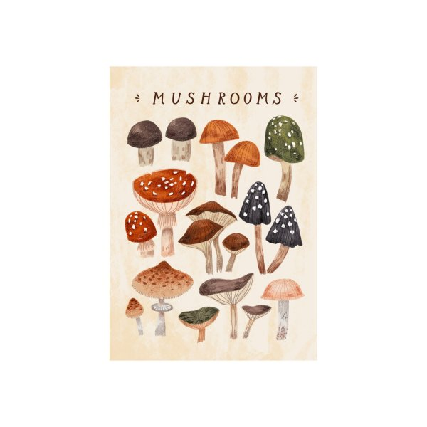 image for Mushrooms vol.1
