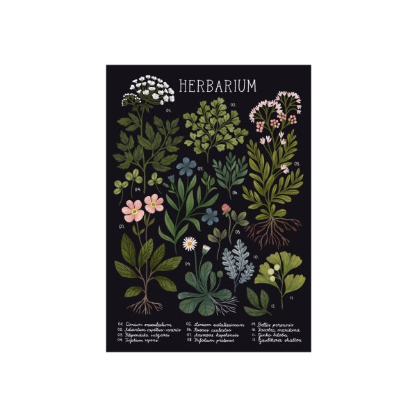 image for Herbarium Dark