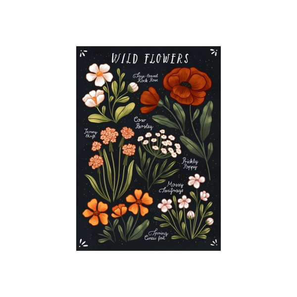image for Wild Flowers vol.1
