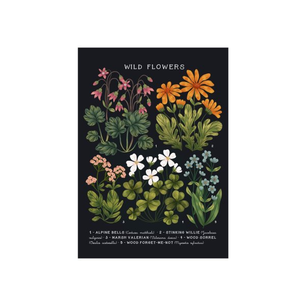 Design for Wild Flowers vol.4  Dark