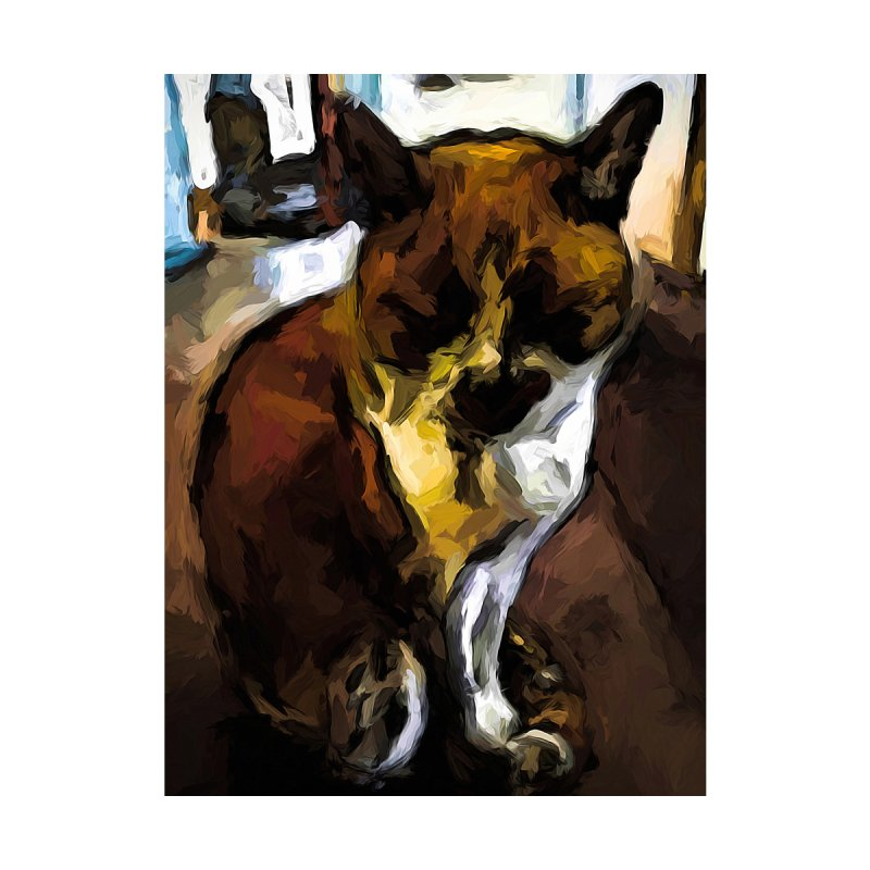 Sleeping Cat of Brown and White with Shadows by jackievano's Artist Shop