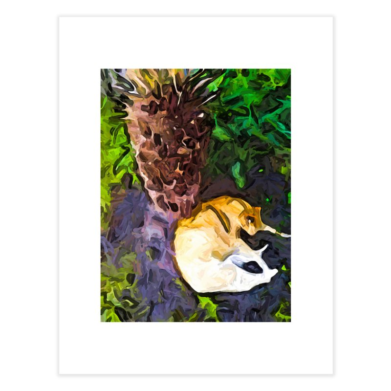 The Sleeping Cat and the Dead Tree Fern Home Fine Art Print by jackievano's Artist Shop