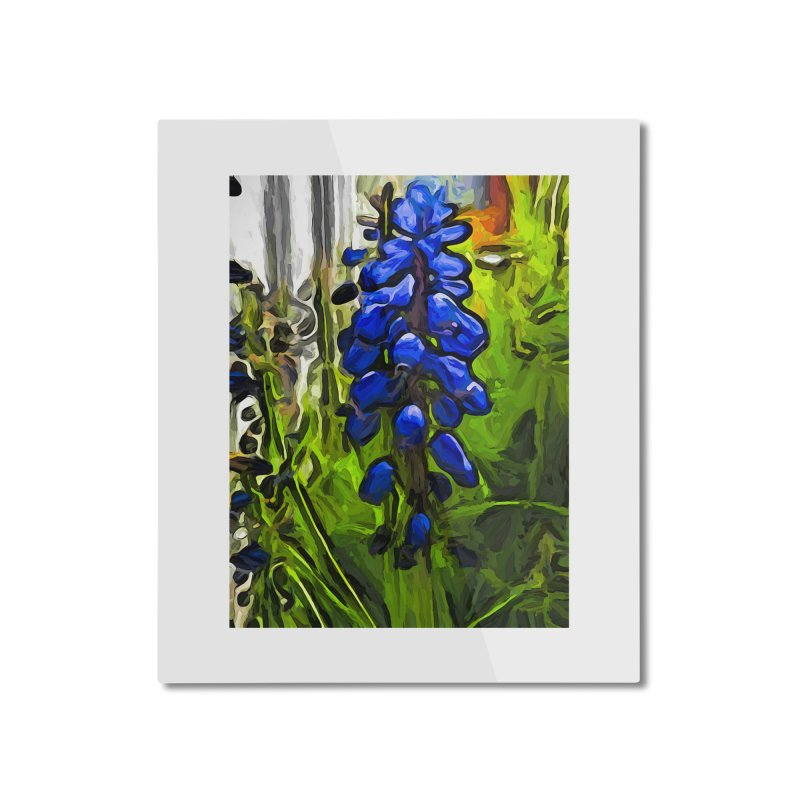 The Cobalt Blue Flowers and the Long Green Grass Home Mounted Aluminum Print by jackievano's Artist Shop