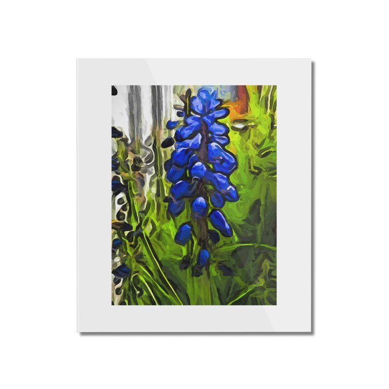 The Cobalt Blue Flowers and the Long Green Grass Home Mounted Acrylic Print by jackievano's Artist Shop