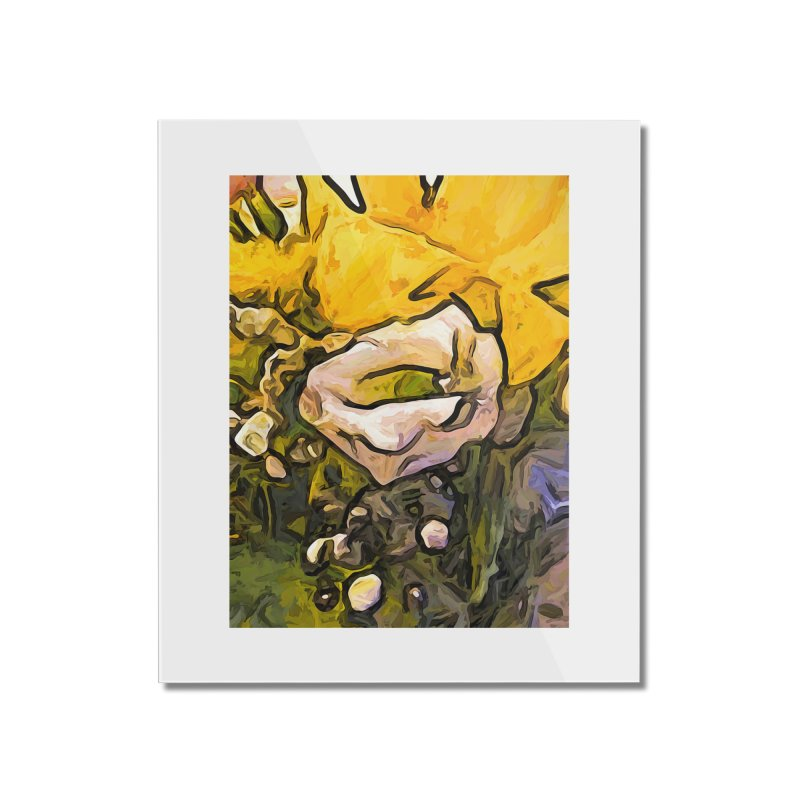 The White Rose with the Eye and Gold Petals Home Mounted Acrylic Print by jackievano's Artist Shop