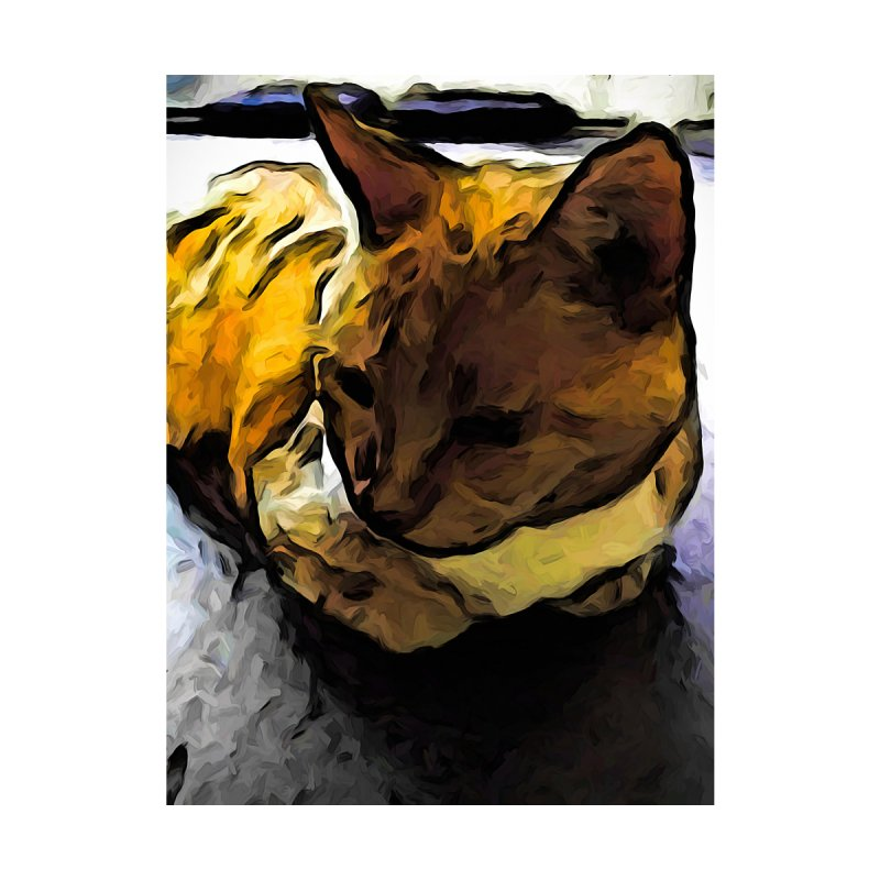 The Sleeping Gold Cat with the Dark Shadow by jackievano's Artist Shop