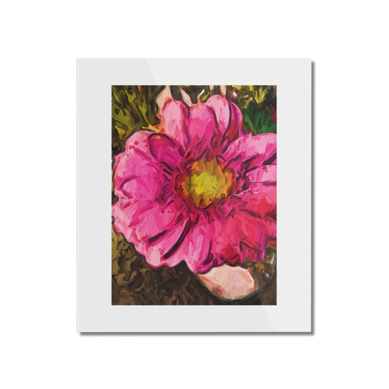 The Euphoria of the Pink and Yellow Flower Home Mounted Acrylic Print by jackievano's Artist Shop