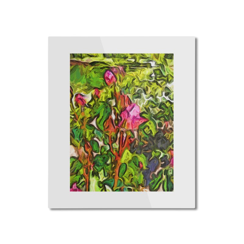 The Pink Rosebud in the Sea of Green Leaves Home Mounted Aluminum Print by jackievano's Artist Shop