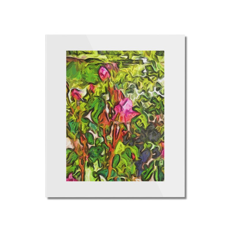 The Pink Rosebud in the Sea of Green Leaves Home Mounted Acrylic Print by jackievano's Artist Shop