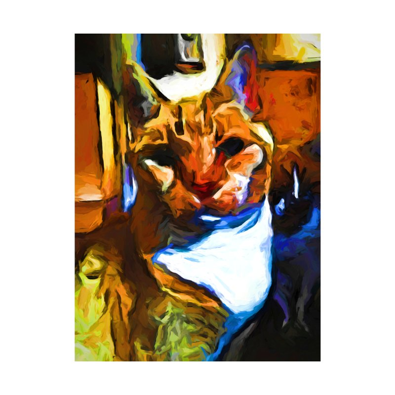 Cats in Shadows and Light by jackievano's Artist Shop