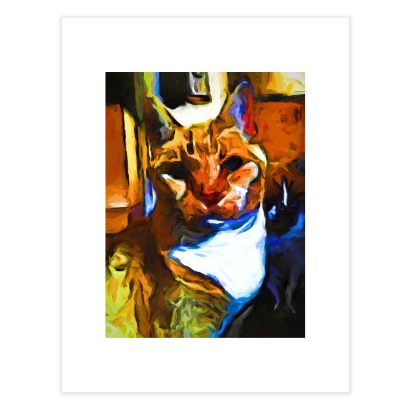 Cats in Shadows and Light Home Fine Art Print by jackievano's Artist Shop
