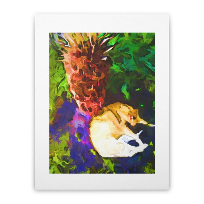 Sleeping Cat under Tree Fern Home Stretched Canvas by jackievano's Artist Shop