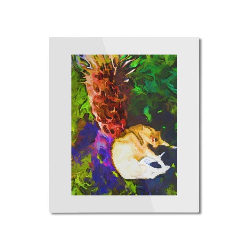 Sleeping Cat under Tree Fern Home Mounted Aluminum Print by jackievano's Artist Shop