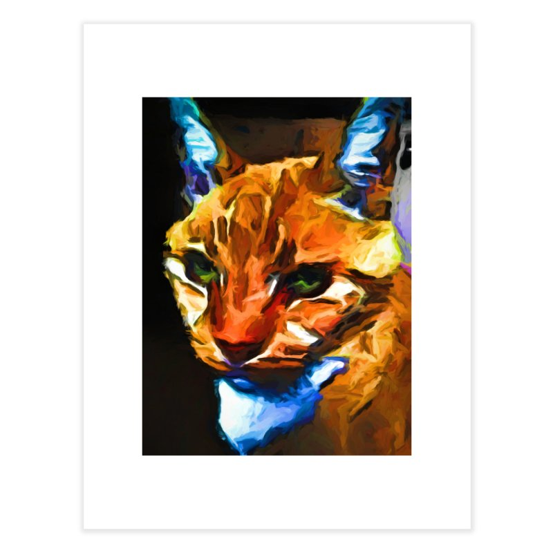 Portrait of Cat Looking Straight Ahead Home Fine Art Print by jackievano's Artist Shop