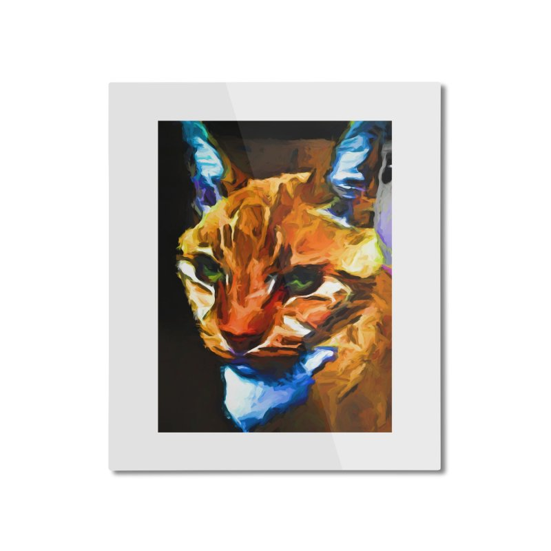 Portrait of Cat Looking Straight Ahead Home Mounted Aluminum Print by jackievano's Artist Shop