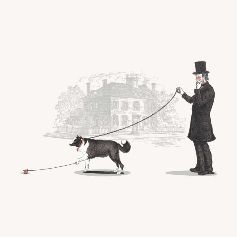 Walking the Dog by Jacques Maes