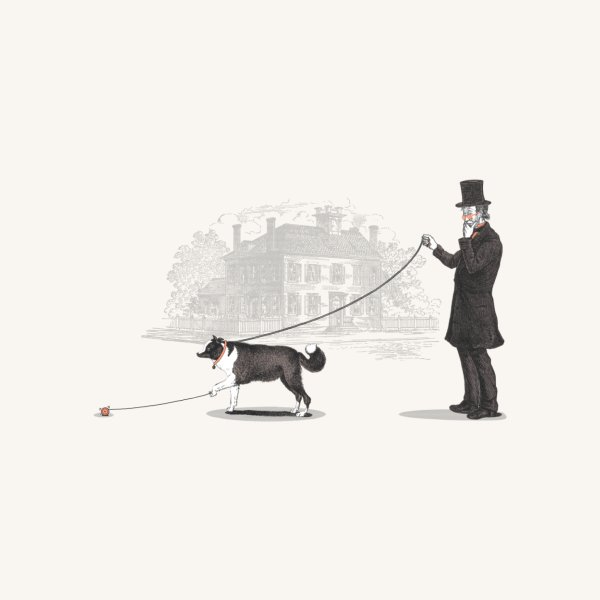image for Walking the Dog