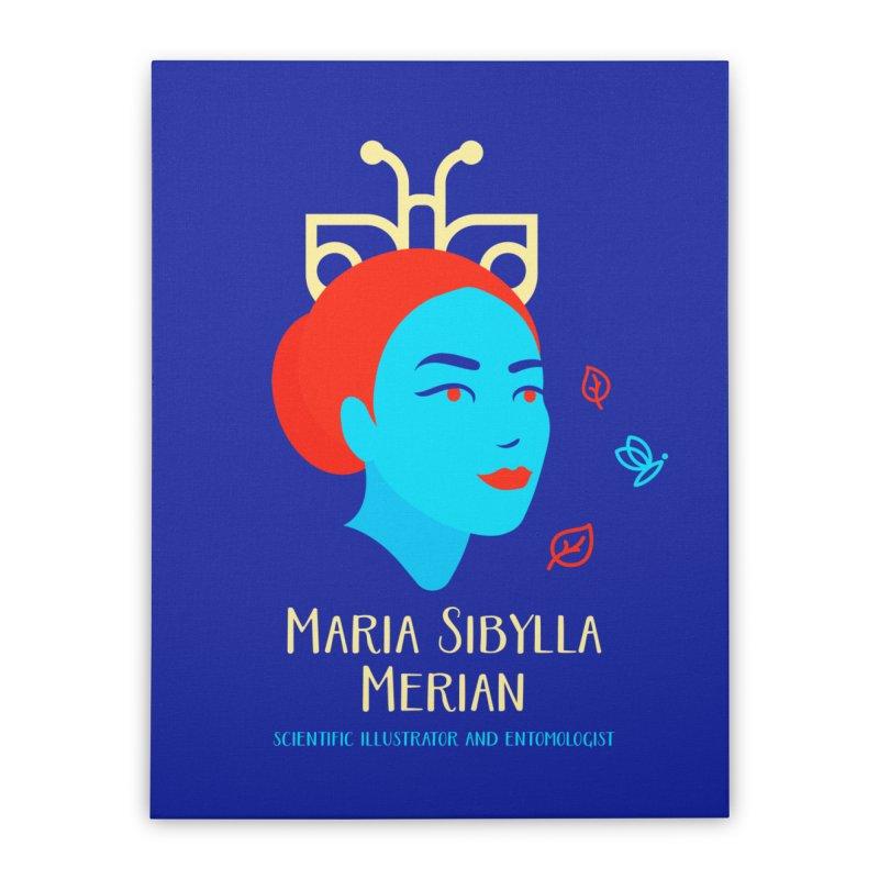 Maria Sibylla Merian Home Stretched Canvas by Jana Artist Shop