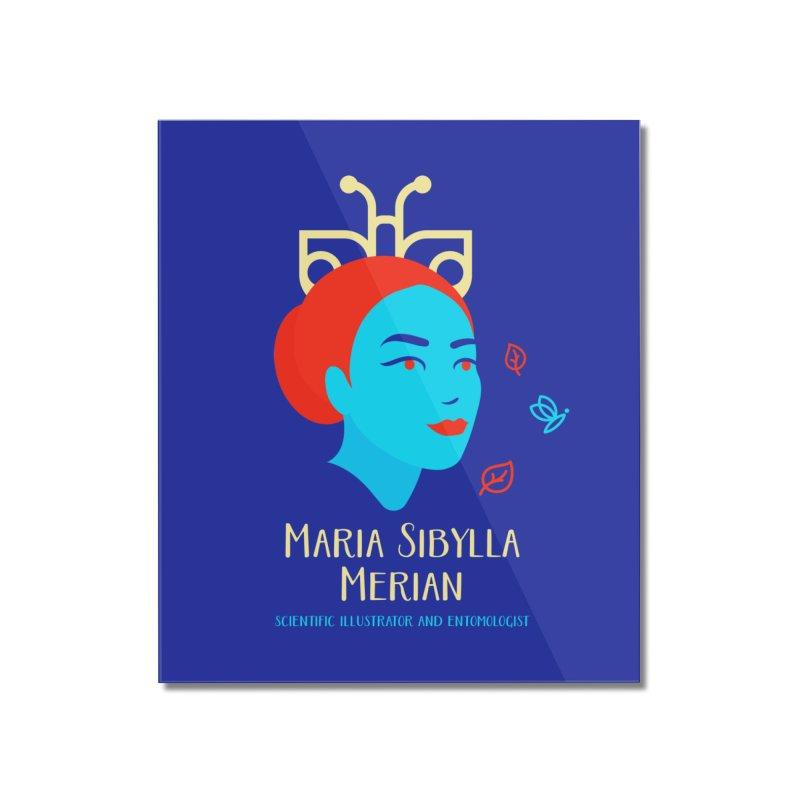 Maria Sibylla Merian Home Mounted Acrylic Print by Jana Artist Shop