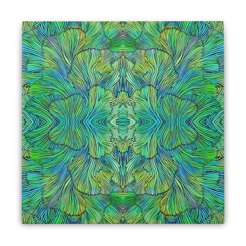 Succulent Dreams Home Stretched Canvas by Jason Castillo Illustration