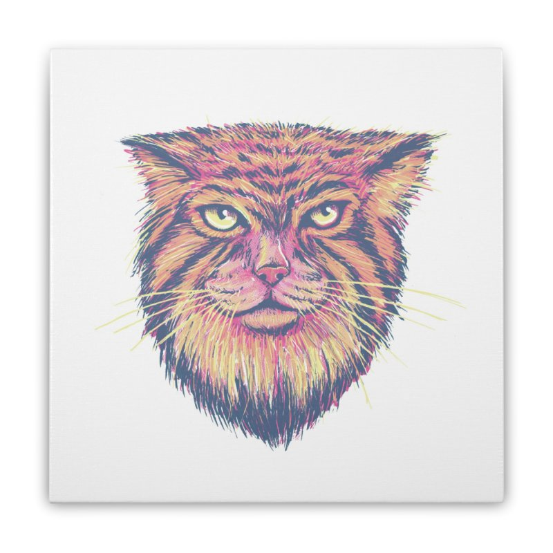 Pallas Cat Home Stretched Canvas by Jason Castillo Illustration