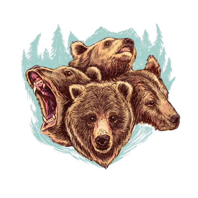Four Bears Women's T-Shirt by Jason Castillo Illustration
