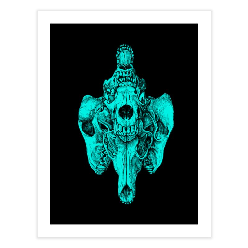 Cyan Coyote Skull   by Jason Castillo Illustration