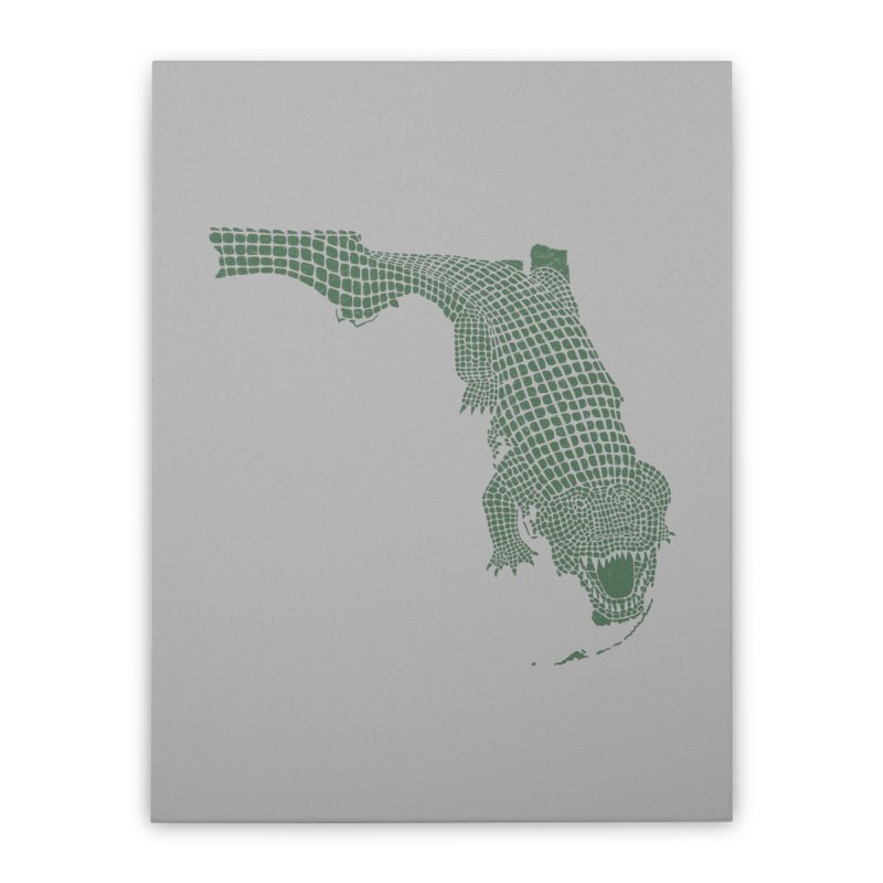 Florida Gator Home Stretched Canvas by Jason McDade