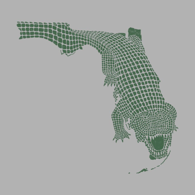 Florida Gator None  by Jason McDade