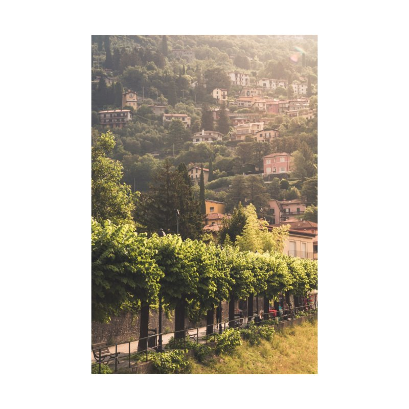 Sunny Varenna pt. 2 Accessories Magnet by Jelly Designs