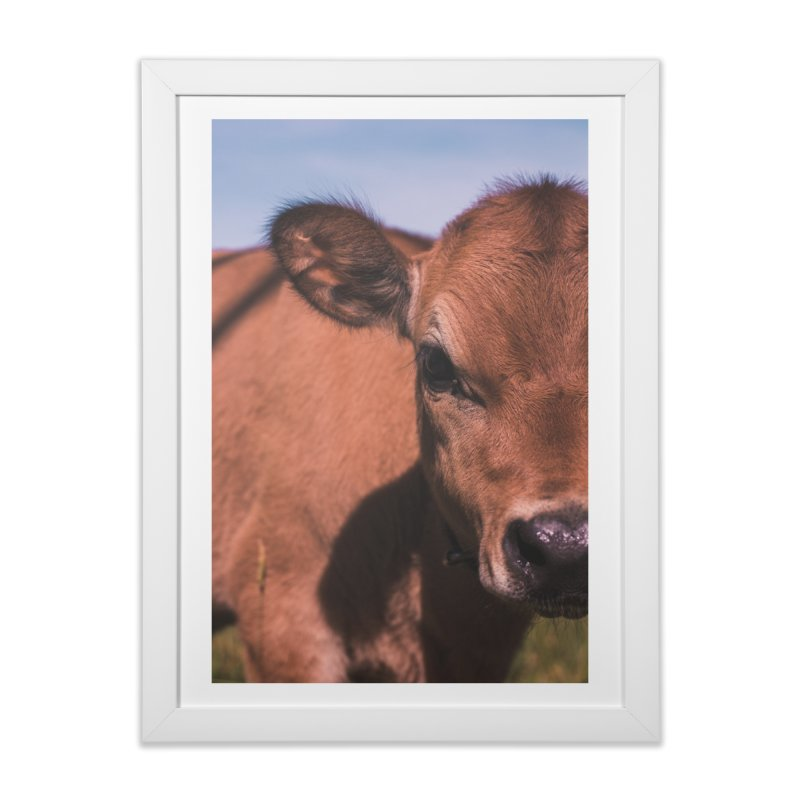 Calf Home Framed Fine Art Print by Jelly Designs