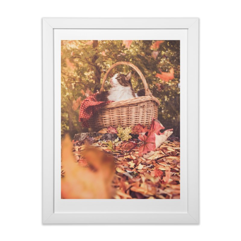 Majestic Merlin Home Framed Fine Art Print by Jelly Designs