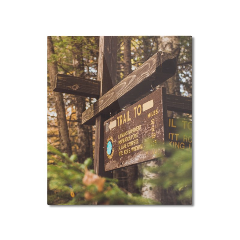 Where To? Home Mounted Aluminum Print by Jelly Designs