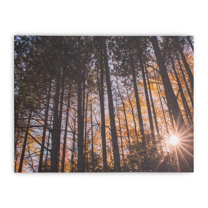 Shine Through Home Stretched Canvas by Jelly Designs
