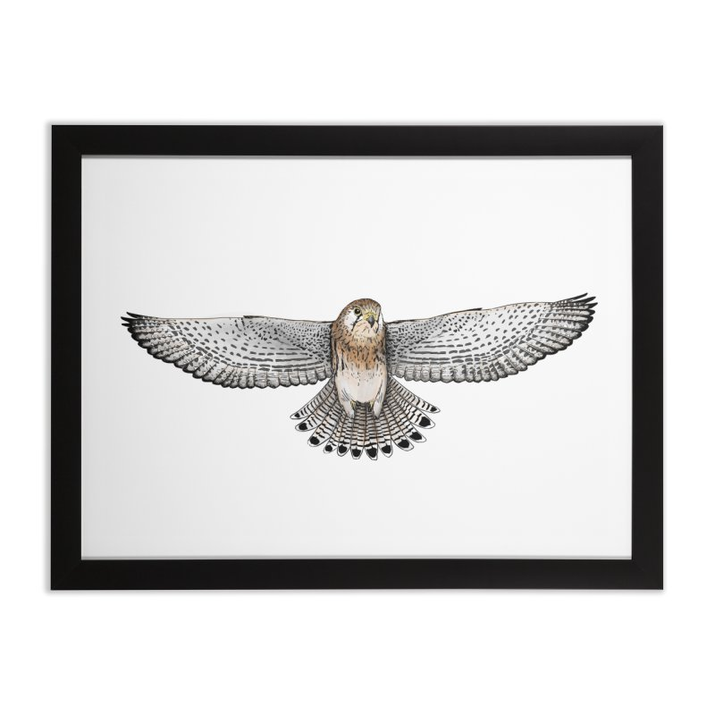 Kestrel Home Framed Fine Art Print by jenbackman's Artist Shop
