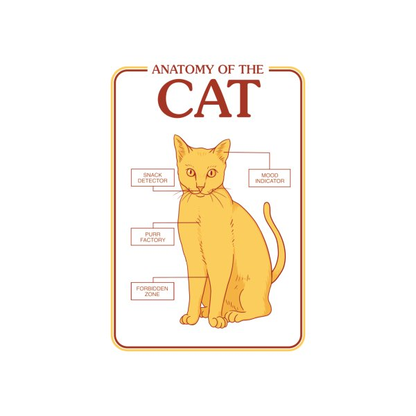 image for Cat Anatomy