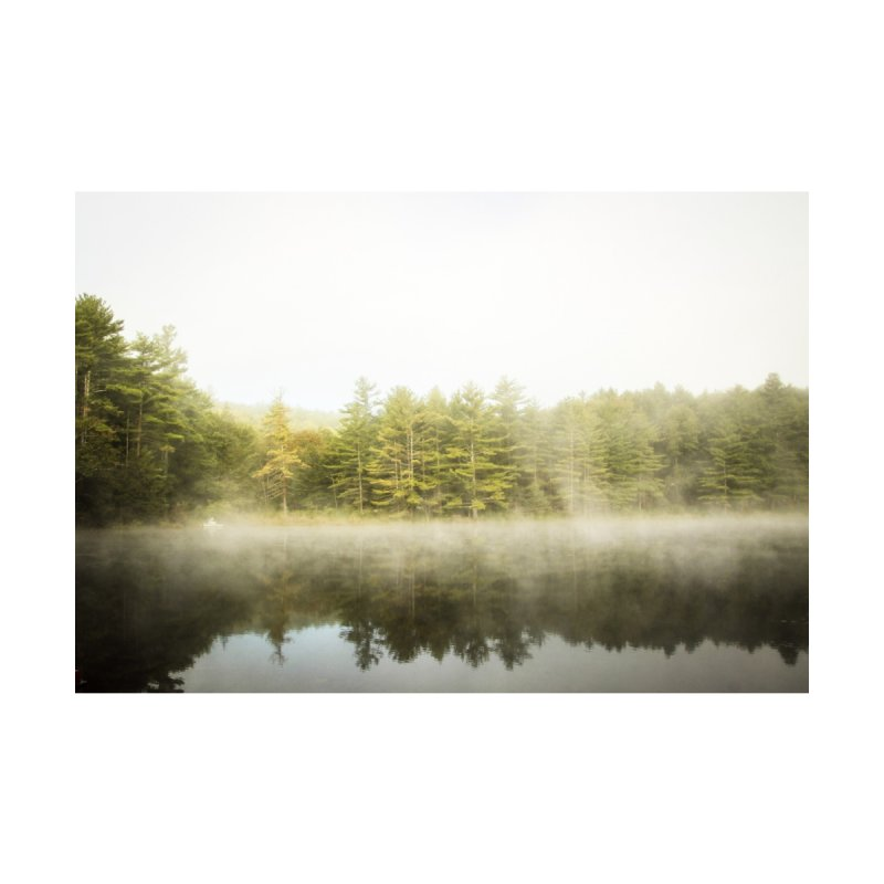 Morning Mist by Jenn Stillman's Artist Shop