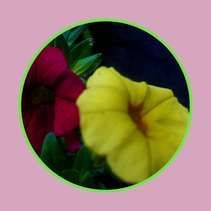 flowers #2 Accessories Sticker by J. Lavallee's Artist Shop