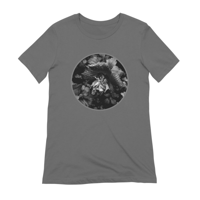 raindrops Women's Extra Soft T-Shirt by J. Lavallee's Artist Shop