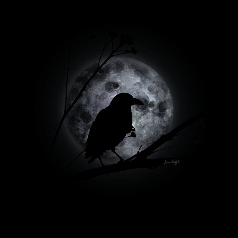 Crow Moon by jessileigh's Artist Shop