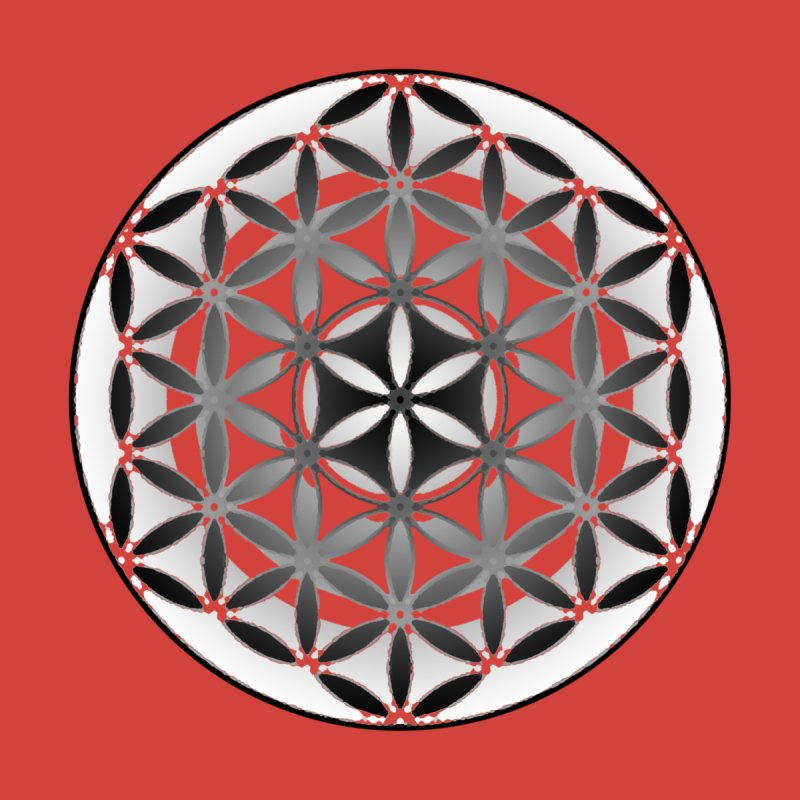 Flower of Life 2 Women's T-Shirt by Joan Ninja Hen's Playground