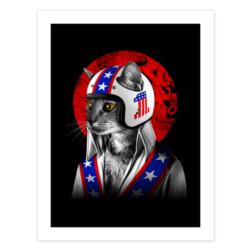 Evel Katneivel Home Fine Art Print by Joe Conde