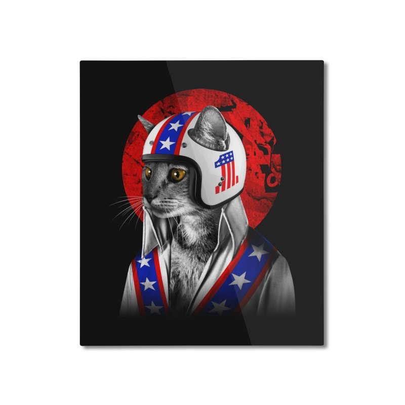 Evel Katneivel Home Mounted Aluminum Print by Joe Conde
