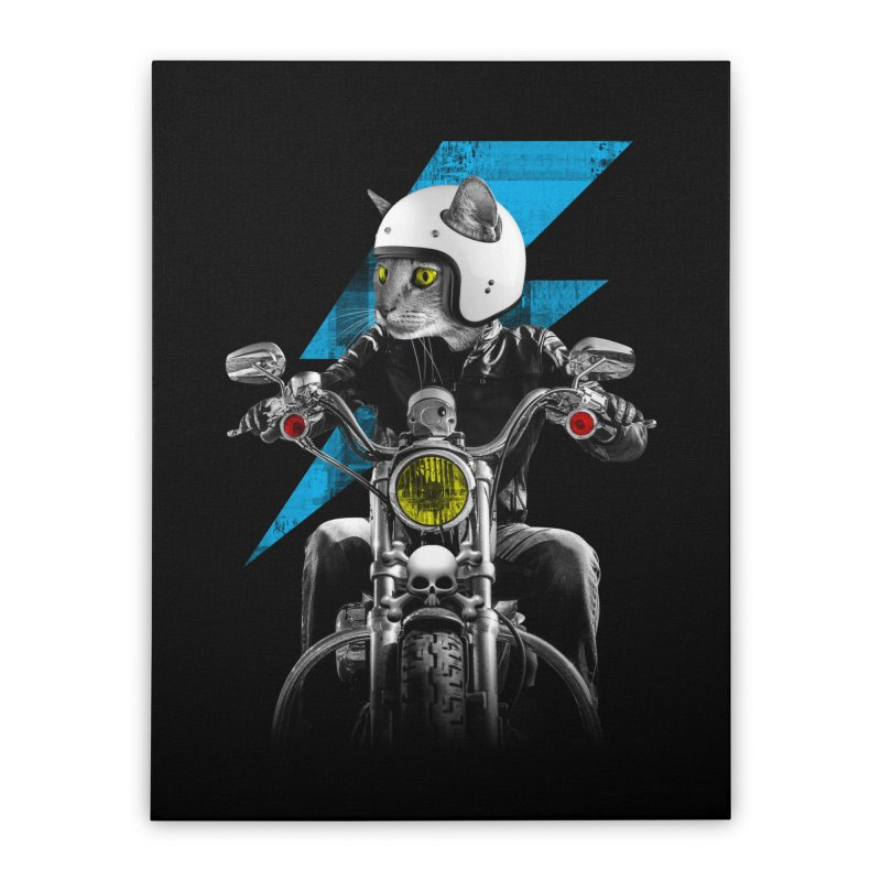 Biker Cat Home Stretched Canvas by Joe Conde