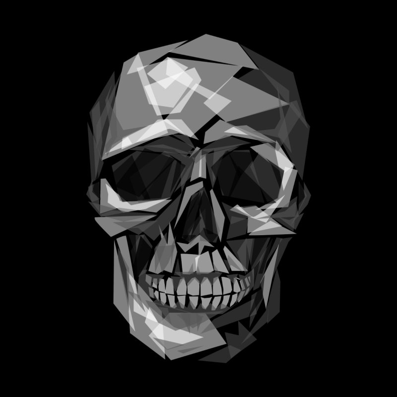 Geometric Skull by Joe Conde