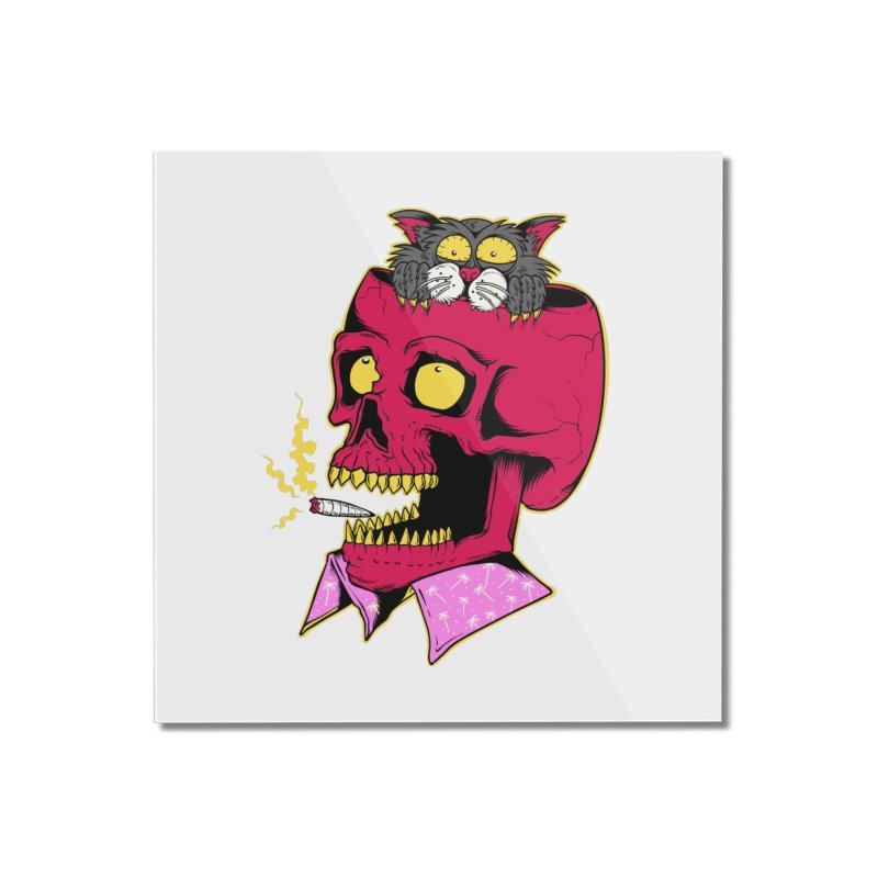 Dude, what the hell? Home Mounted Acrylic Print by Joe Tamponi