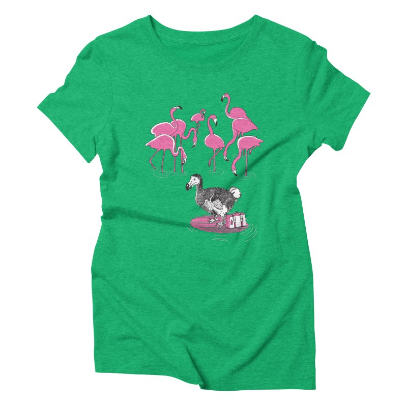 and the Flamingoes Celebrated Women's Triblend T-Shirt by John D-C