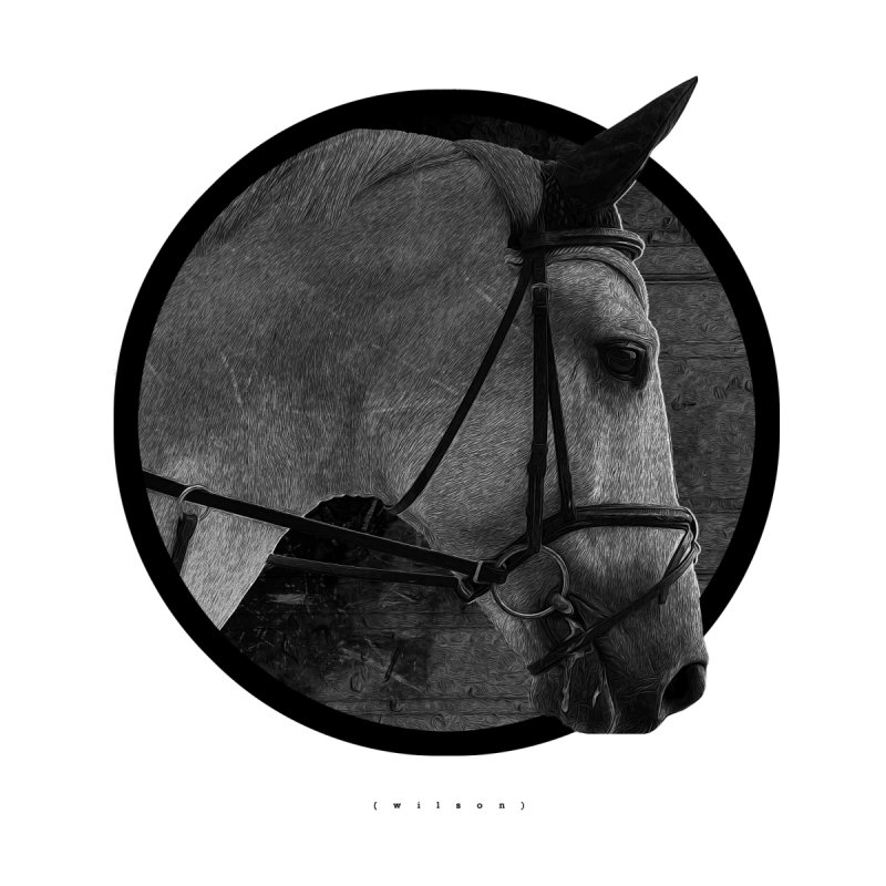 Horse by Jonathan Wilson