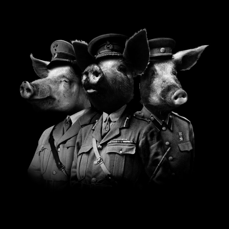War Pigs Accessories Greeting Card by joshbillings's Artist Shop