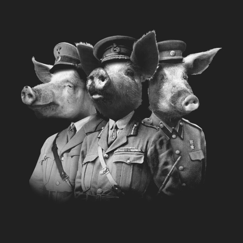 War Pigs Women's Fitted T-Shirt by joshbillings's Artist Shop